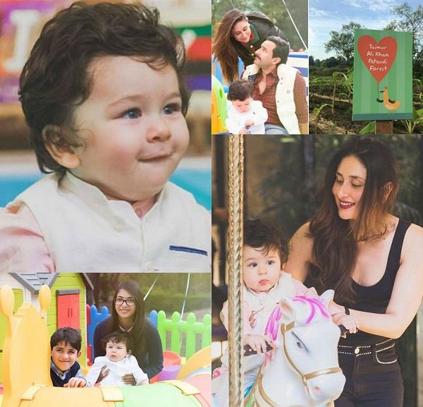 taimur ali khan gets forest as gift on 1st birthday