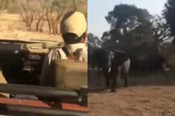 गुस्साए हाथी ने  टूरिस्ट पर किया हमला, वायरल हुआ VIDEO