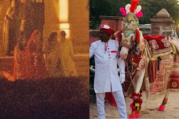 priyanka chopra nick joans wedding royal look