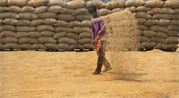donate surplus grain in warehouses to other countries