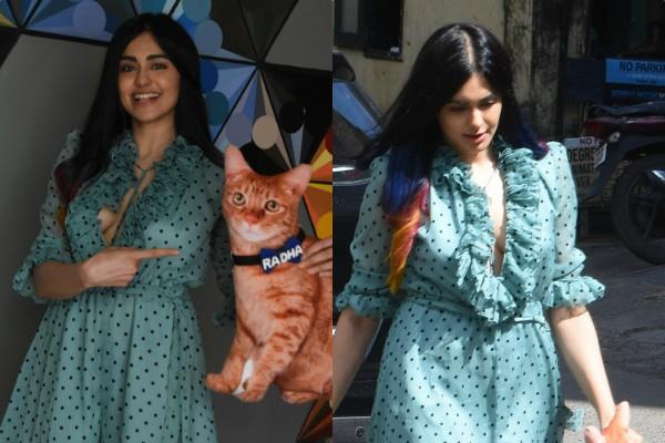 adah sharma celebrated her birthday in unique style