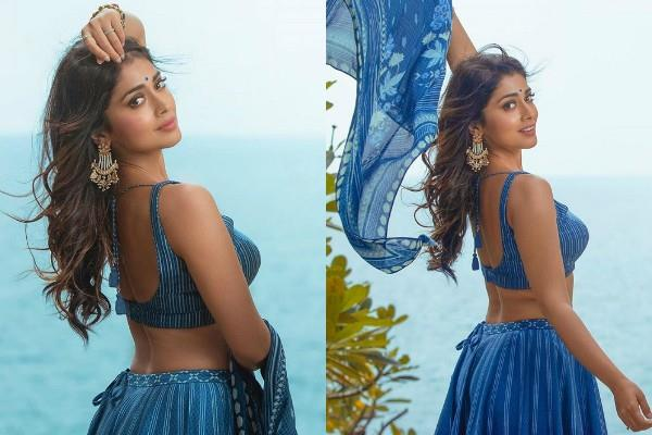 shriya saran looks beautiful in traditional outfit