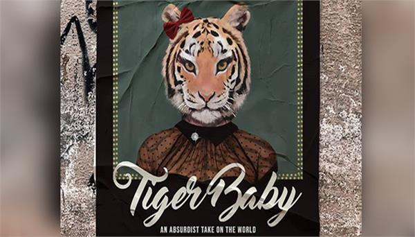 bollywood top celebrities welcomed tiger baby films