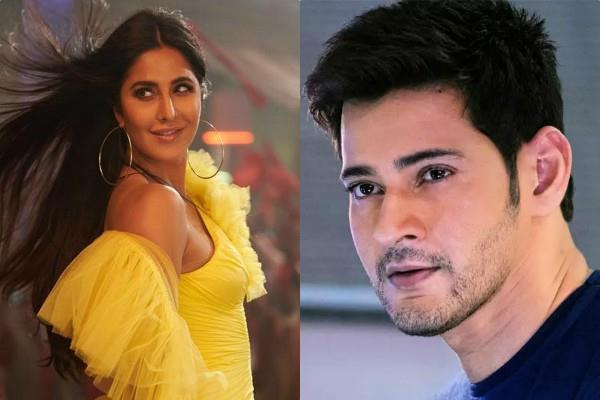 katrina kaif can work with mahesh babu