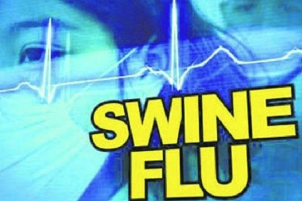 12 people died due to swine flu