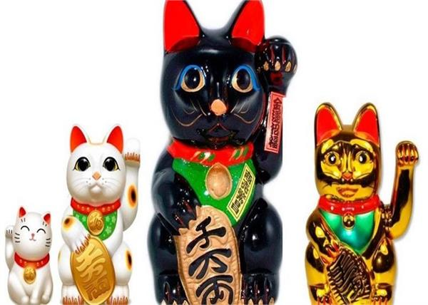 feng shui tips lucky cat bring positive energy and money in the home