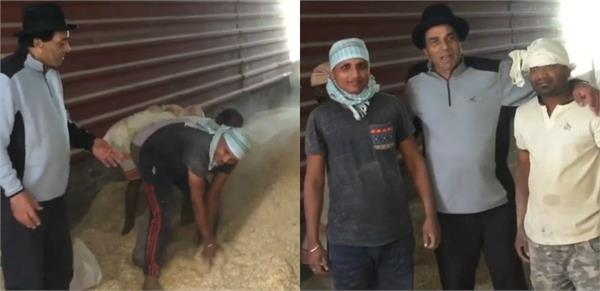 dharmendra spending quality time farm house