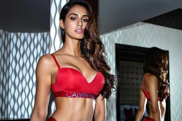 disha patani hot photoshoot
