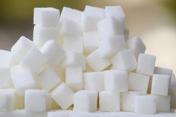 due to the drought 15 reduction in sugar production
