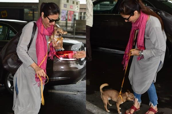 tabu spotted at airport