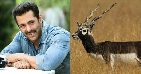 jodhpur court acquitted salman khan blackbuck case