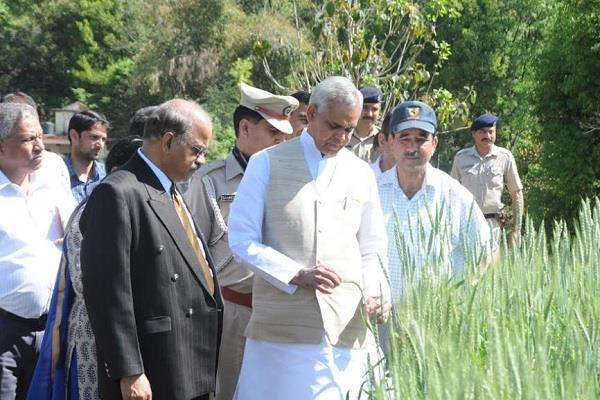 the governor who made the raj bhawan the farm