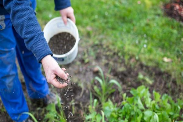 new company to increase fertilizer production