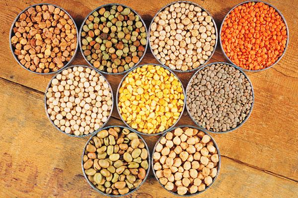 foodgrains production at 28 94 million tonnes in 2018 19 same as last year