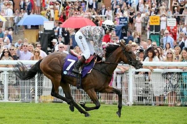 khadijah mellah becomes first british jockey to win a horse race wearing a hijab