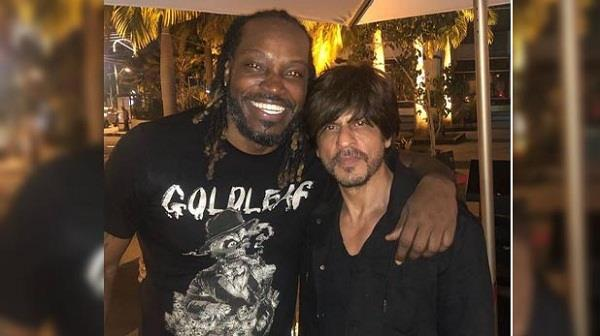 gayle shares picture with shahrukh khan on social media wrote this thing