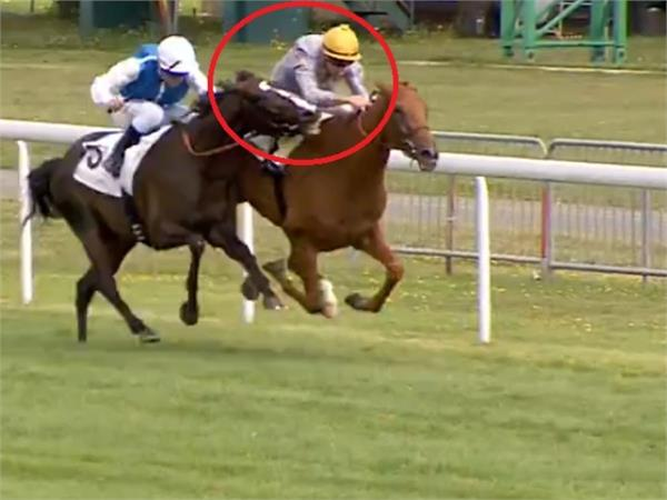 horse takes bite out of rival jockey to win race in france