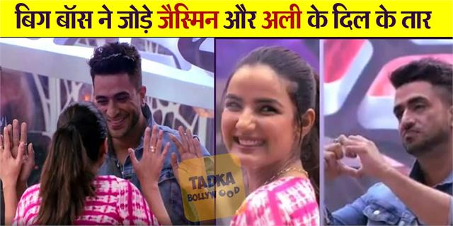 jasmin bhasin friend aly goni entry in bigg boss 14