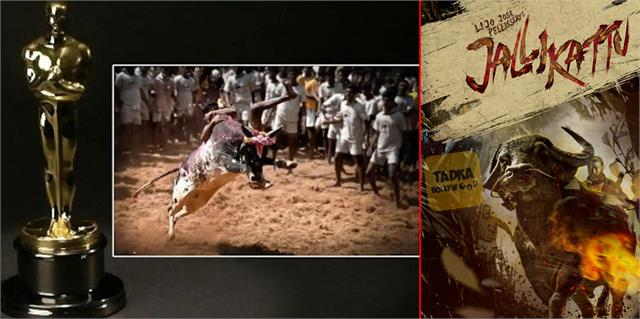 malayalam film jallikattu is india official entry for oscar awards 2021 category