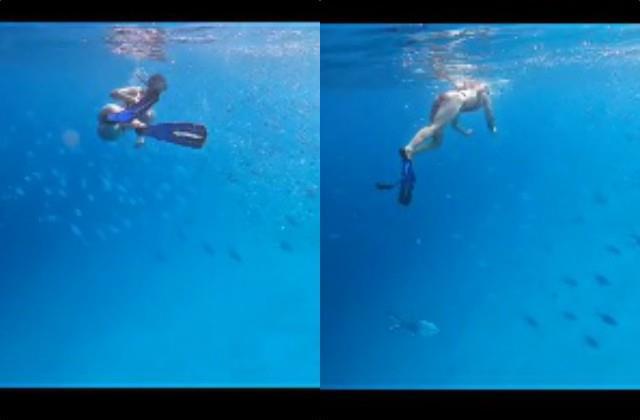 disha patani swims inside sea video viral