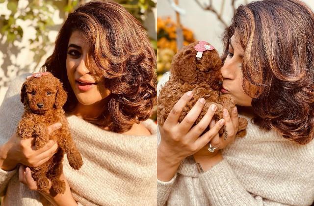ayushmann khurrana and tahira kashyap welcome new family member