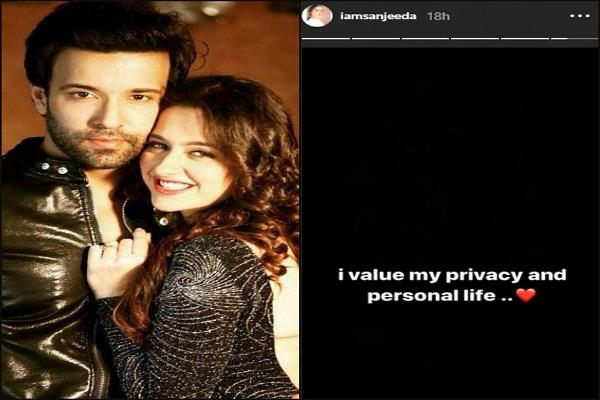 sanjeeda sheikh and aamir ali separation after 8 year of marriage