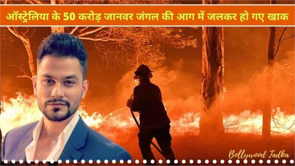 kunal khemu post on australia bushfires