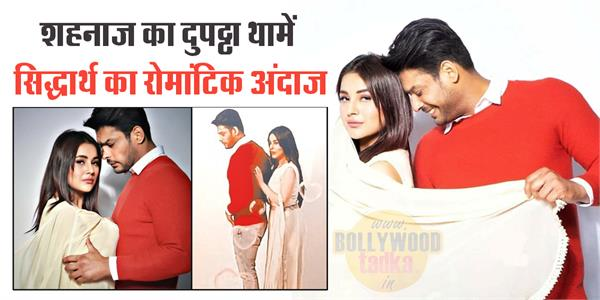 sidharth shukla shehnaz gill romantic photoshoot pictures viral