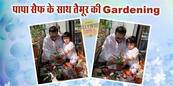 taimur ali khan do gardening with saif ali khan