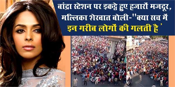 mallika sherawat suchitra reaction after seeing workers gathered in mumbai
