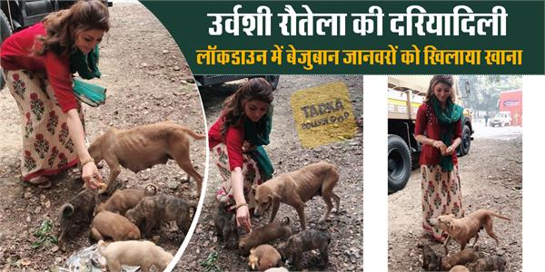 urvashi rautela feed street dogs during lockdown