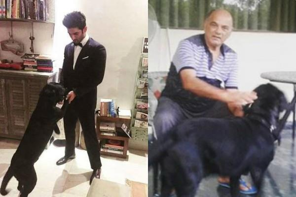 sushant singh rajput dog fudge having good time with his father kk singh