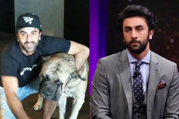ranbir kapoor bitten by his own dog