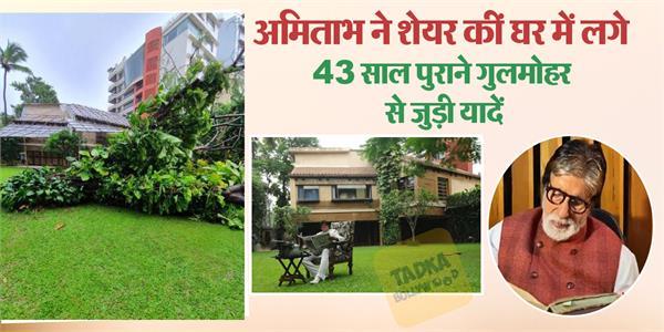 amitabh bachchan share story of gulmohar tree in his house prateeksha