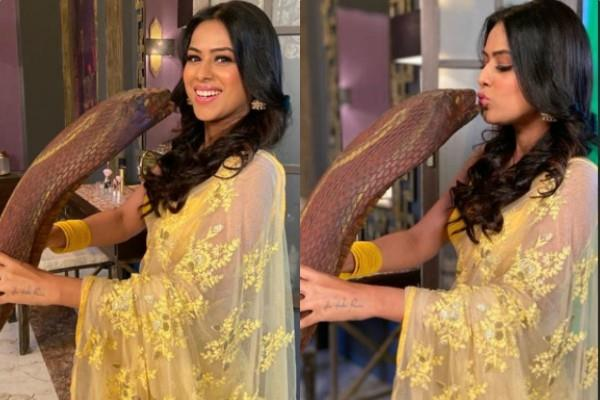 nia sharma shares photos of kissing snake