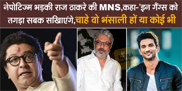 raj thackeray party mns asks artists to contact party if they face nepotism