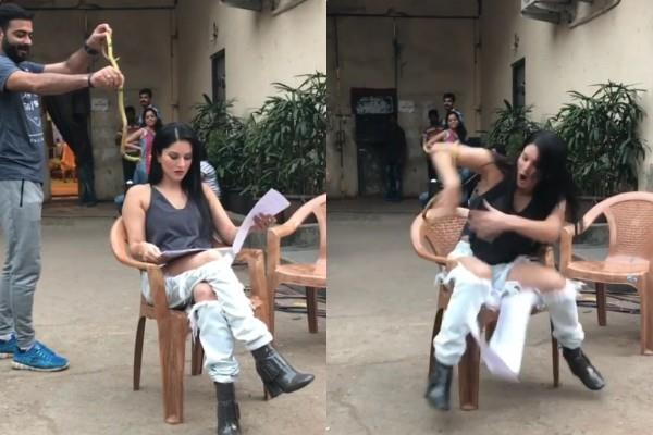 someone threw a snake over sunny leone throwback video viral
