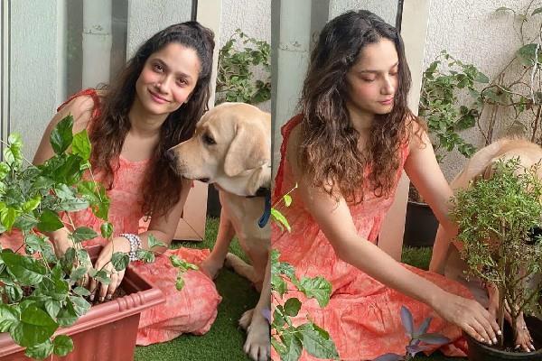 sushant singh rajput ex girlfriend ankita lokhande join plant4ssr