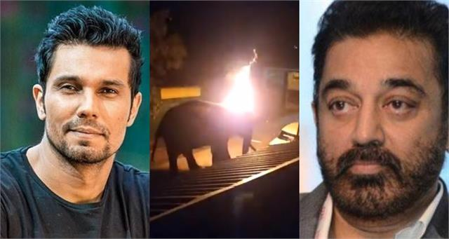 तमिलनाडु में हाथी को जलाकर मारने पर भड़के स्टार्स, कहा-'इंसानियत मर गई'