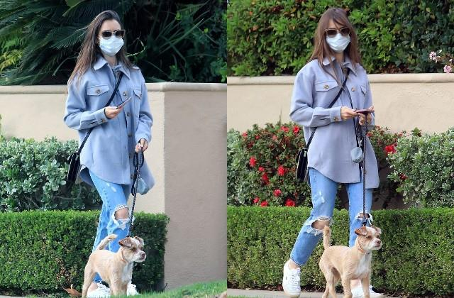 lily collins snapped in los angeles walking with dog