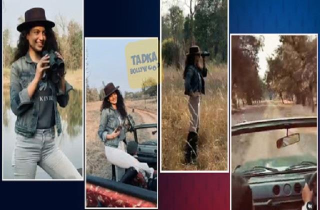 kangana ranaut shared her photos and video of jungle safari