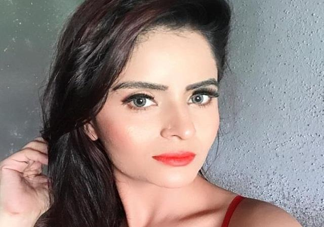 a accused gehana vasisth of forcibly shooting pornographic videos