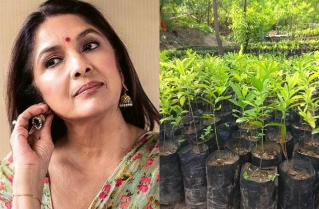 neena gupta planted 557 trees in arunachal pradesh