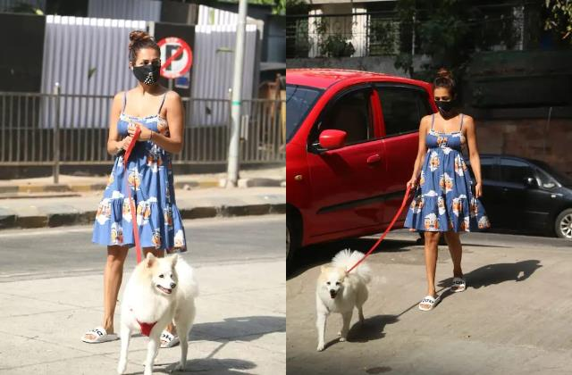malaika arora spotted with her doggie during lockdown