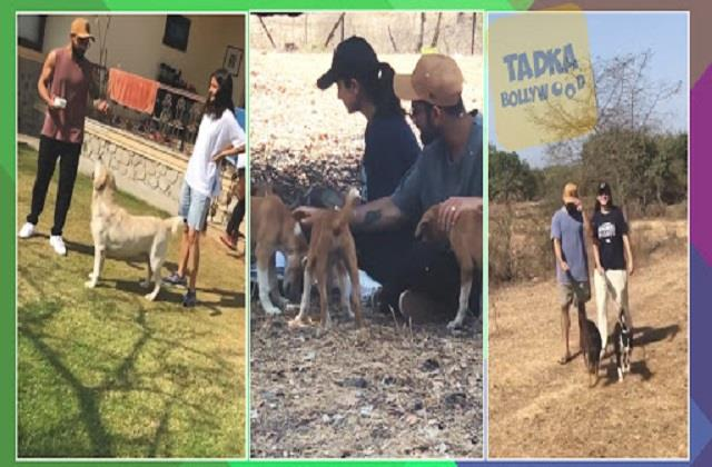 anushka sharma shares special moments with virat kohli and dogs
