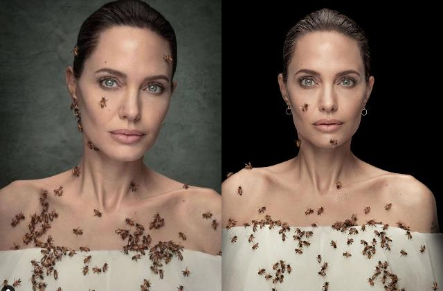 angelina jolie photoshoot with bees viral on internet