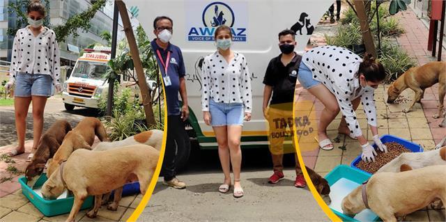 pop sensation dhvani bhanushali gave food stray dogs