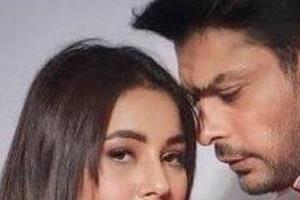 sidharth shukla asks for work from shehnaaz gill after she becomes producer