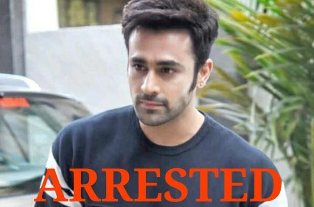 naagin 3 fame pearl v puri accused rape case mumbai police arrested him