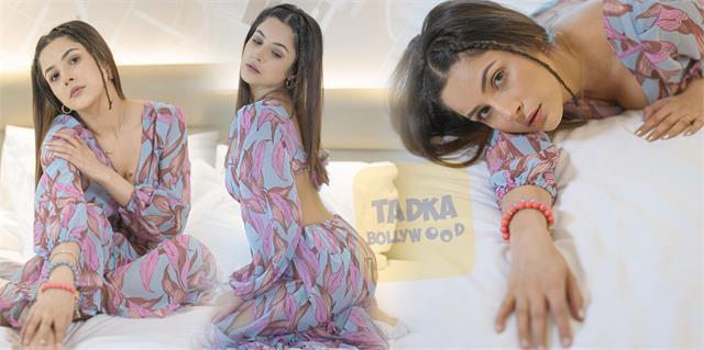 shehnaaz gill flaunts her toned body in backless dress